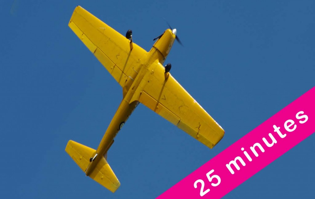 25 Minute Aerobatic Flight