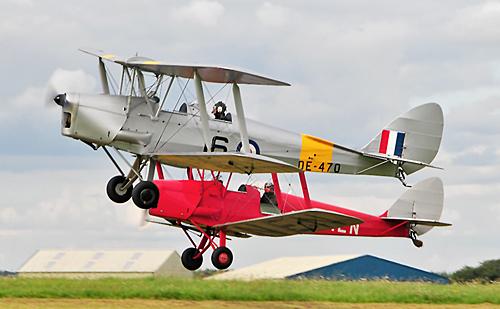 500 Pixel Width 2 Moths Taking Off
