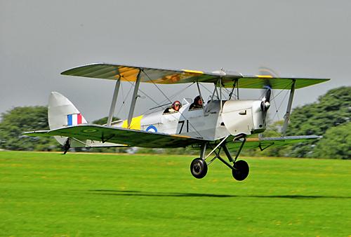 500 Pixel Width Moth Landing 2 crew